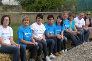 Barclays Bank employees spent a hectic day working on the farm but seemed to enjoy it!