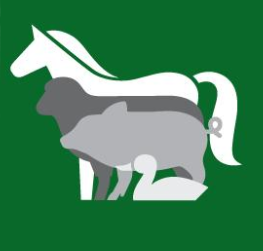 Reopening Changes